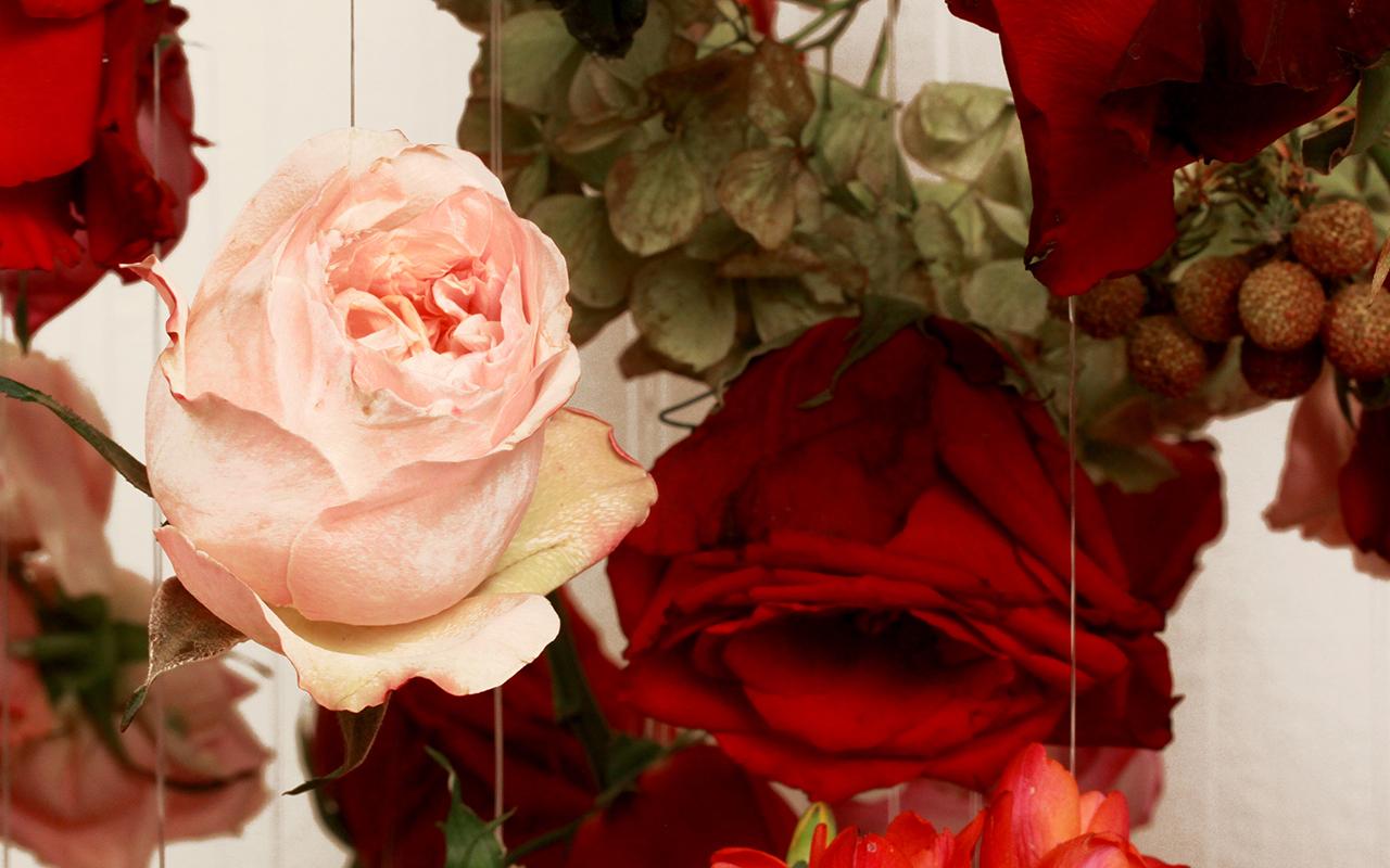 Boom Blooms – Valentine's Day